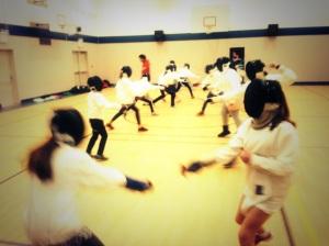 Fencing 1