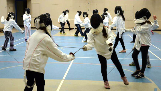 Trying To Understand The Fencing Phenomenon